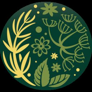 Pure Tea Selection FENYKL – ANÝZ BIO