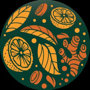Pure Tea Selection KURKUMA – POMERANČ BIO